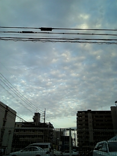 c0184365_175998.jpg