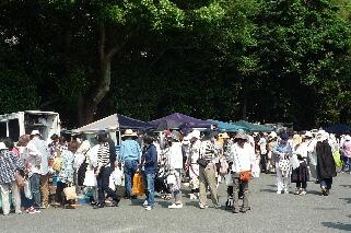 福岡・護国神社・蚤の市_f0121167_17415683.jpg