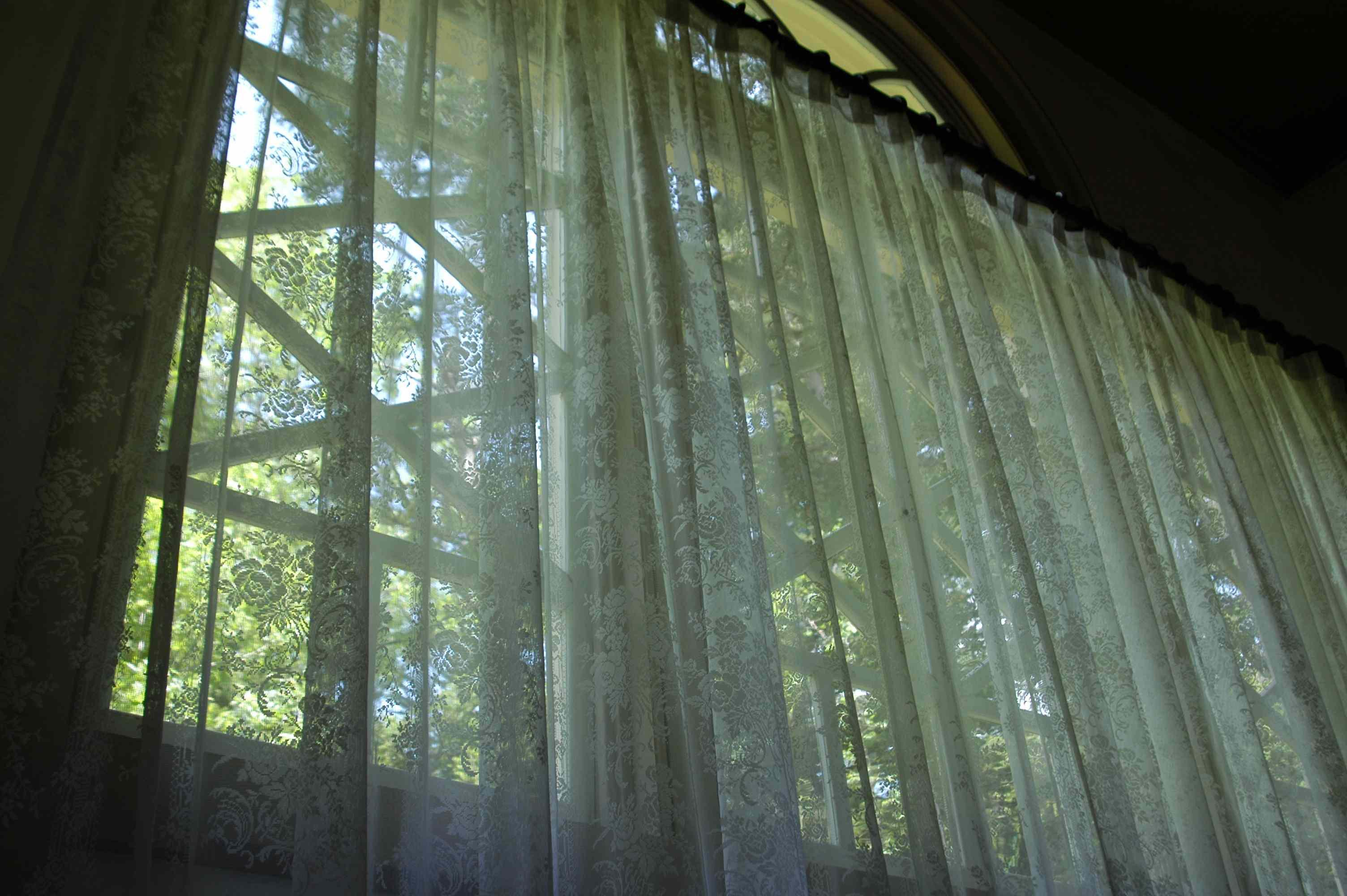 もうひとつの森へ_d0095471_074574.jpg