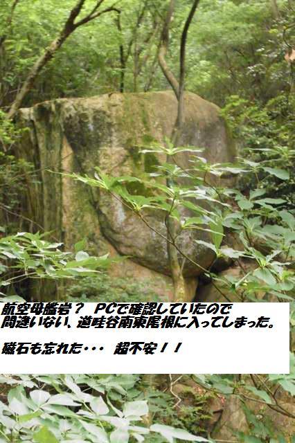 c0153888_11303187.jpg