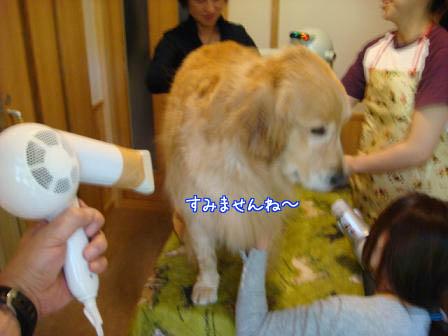 遠方より友集まる(最終編)_f0064906_17353967.jpg