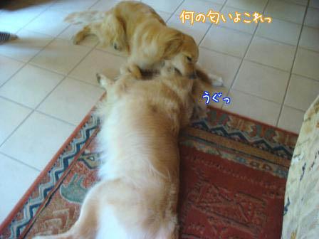遠方より友集まる(最終編)_f0064906_17592312.jpg