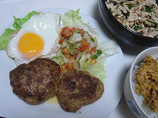 ハンバーグと鶏ささみの梅しそバルサミコ酢和え_c0025217_16482529.jpg