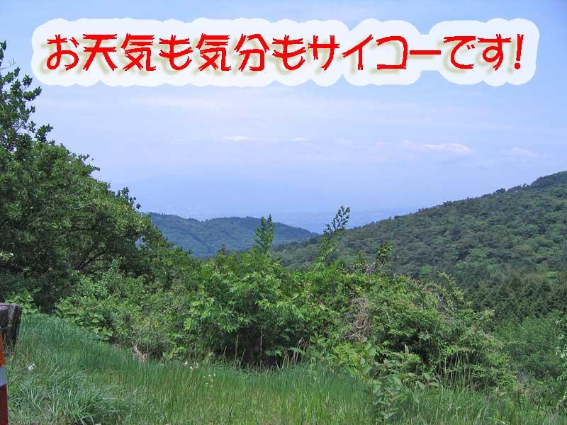 f0174721_1734494.jpg