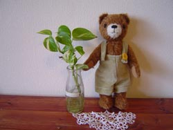 bear_d0141953_15375563.jpg