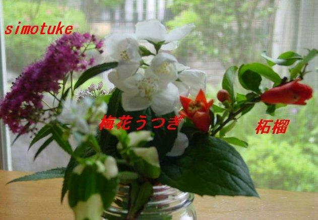 f0179357_155621.jpg