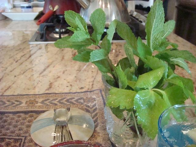 三つ葉とミントがある、朝食は香りの世界、_d0100880_9545367.jpg