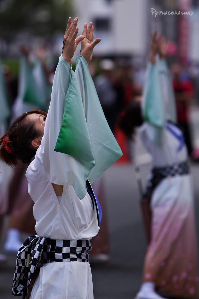 豊川おいでん祭:その3_c0187584_12303377.jpg