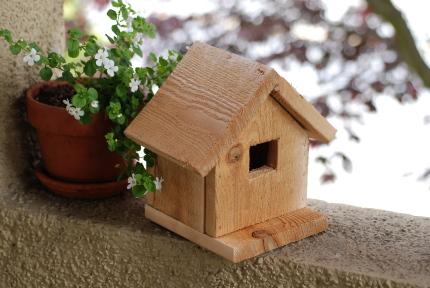 切妻屋根の鳥の巣箱制作プロジェクト。_d0129786_14462334.jpg