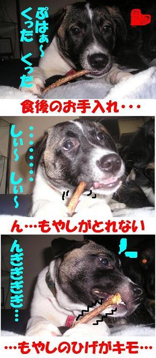 c0000189_14294110.jpg