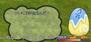 b0182599_103072.jpg