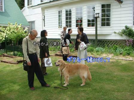 昼食会に五郎も同伴して_f0064906_1920452.jpg