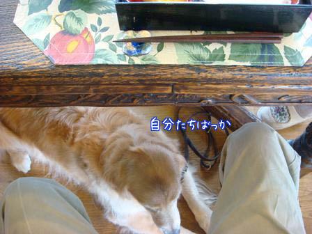 昼食会に五郎も同伴して_f0064906_1925260.jpg