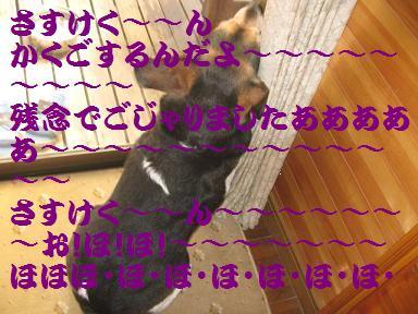 d0104209_2244714.jpg