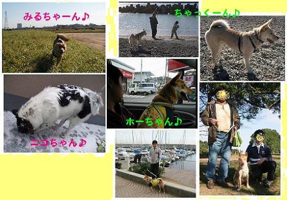f0057509_218324.jpg