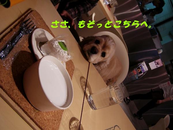 b0067012_011528.jpg