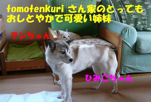 f0121712_15573296.jpg