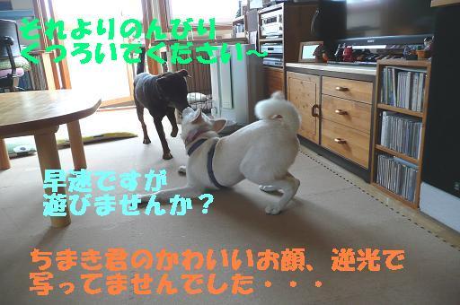 f0121712_15575346.jpg