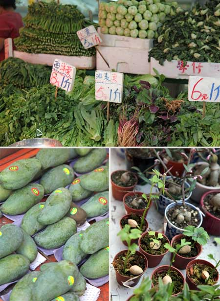 香港 食料品の市場_b0117234_2394354.jpg