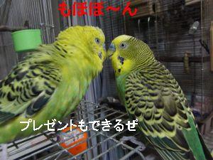 f0196665_013391.jpg