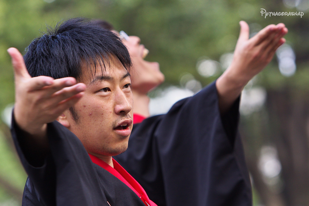 豊川おいでん祭:その4_c0187584_12142459.jpg