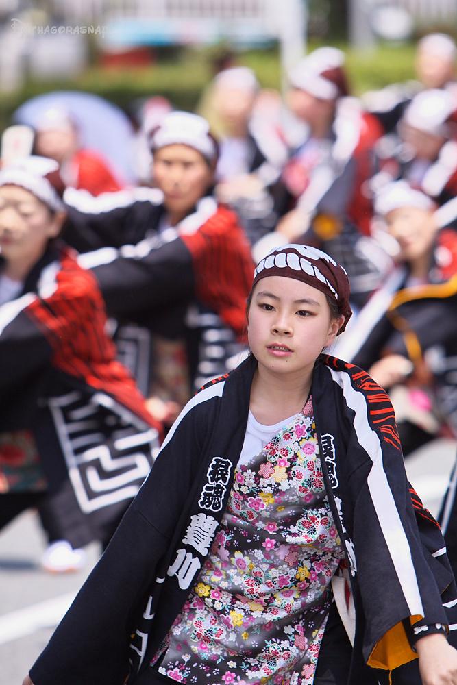豊川おいでん祭:その4_c0187584_12421925.jpg