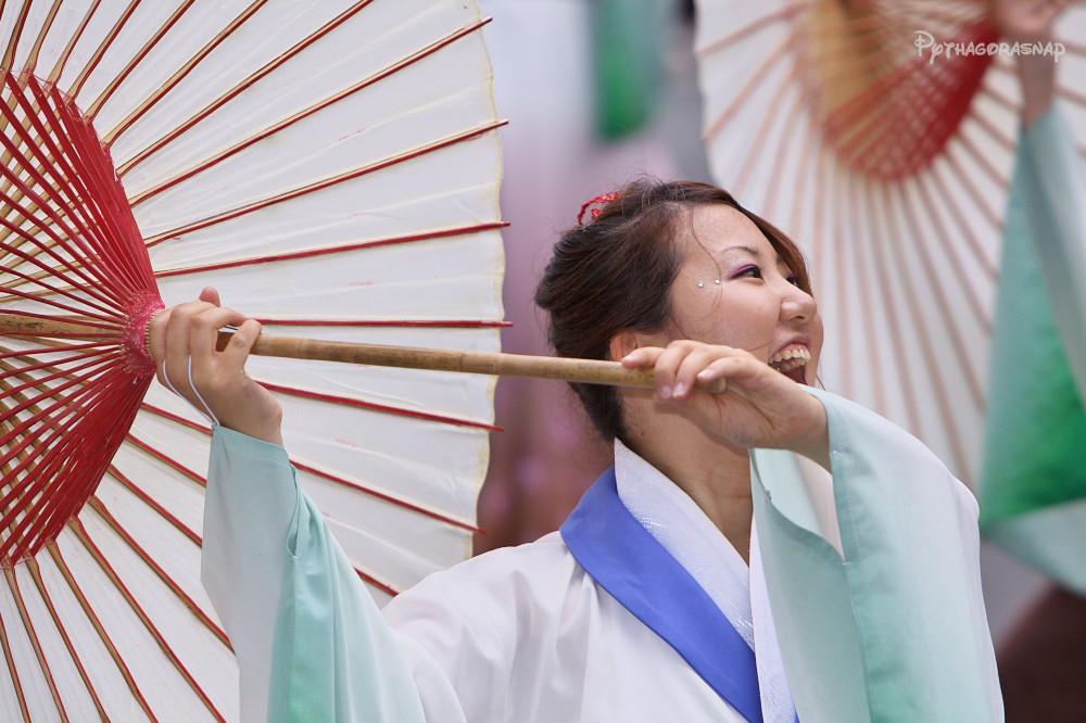 豊川おいでん祭:その3_c0187584_1246112.jpg