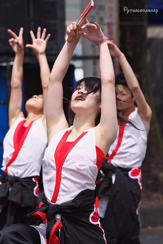 豊川おいでん祭:その4_c0187584_1271117.jpg