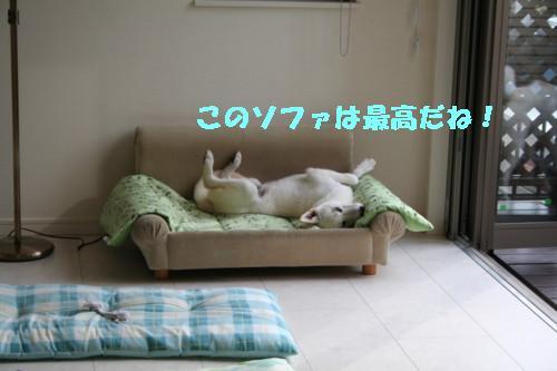 f0121712_15151921.jpg