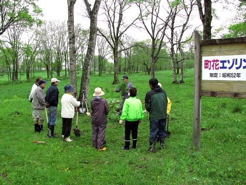 2009年5月29日(金):移植地の草取り実施_e0062415_17255459.jpg