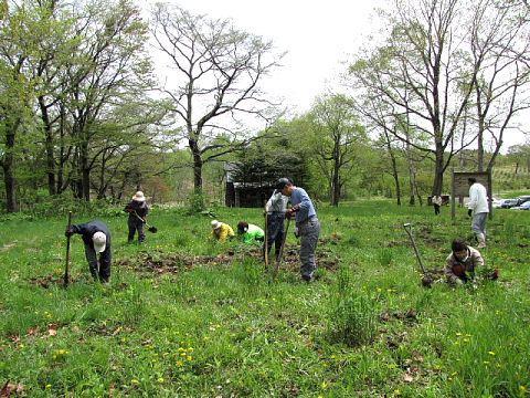 2009年5月29日(金):移植地の草取り実施_e0062415_17263320.jpg