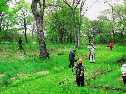 2009年5月29日(金):移植地の草取り実施_e0062415_17272378.jpg