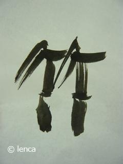 伊豆の南部で タケノコを掘る_c0053520_2244359.jpg