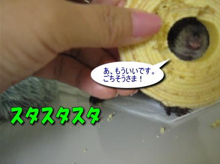 a0015164_1244289.jpg
