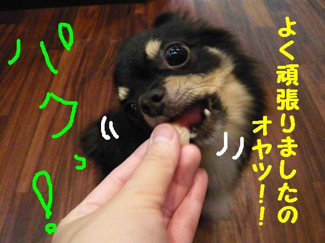 はなまる&うれし!&リボン♪_b0130018_811579.jpg