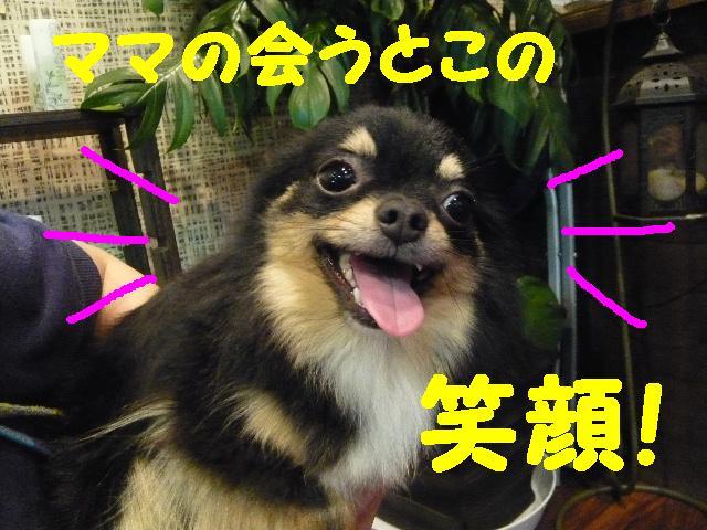 はなまる&うれし!&リボン♪_b0130018_8121281.jpg