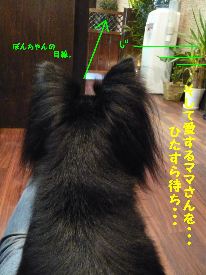 b0130018_812541.jpg