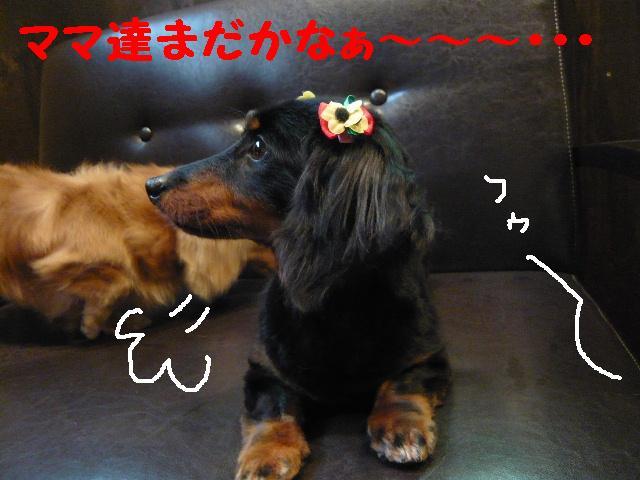 はなまる&うれし!&リボン♪_b0130018_81527.jpg
