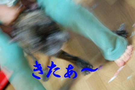 c0130324_22335268.jpg