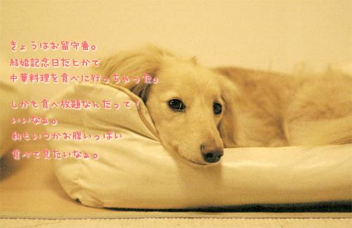 b0014949_17451242.jpg