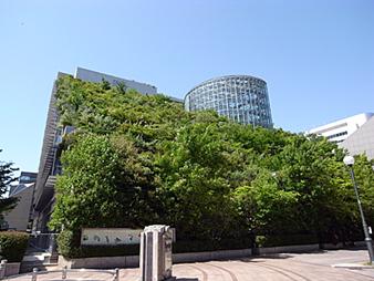 090530 長崎と福岡_b0129659_8354751.jpg