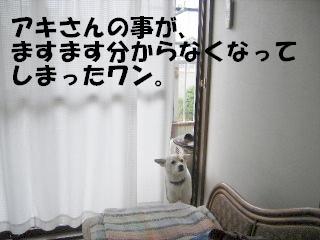 f0043559_1924623.jpg
