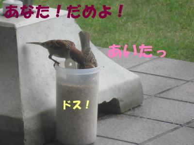 b0158061_21284954.jpg