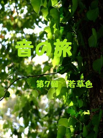 音の旅・第7回(若草色)_e0003966_22111413.jpg