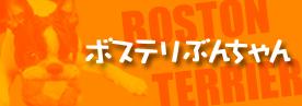 <ボステリぶんちゃん>