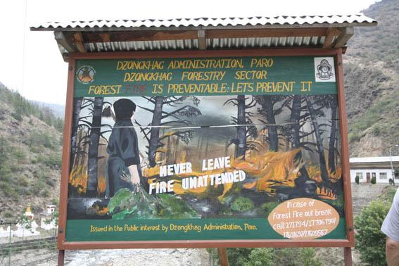 ブータン紀行9:森林破壊_e0054299_1131522.jpg