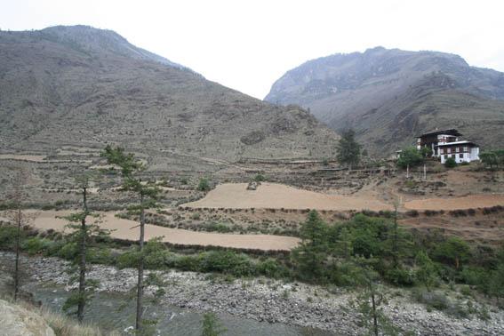 ブータン紀行9:森林破壊_e0054299_11322933.jpg
