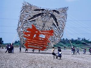 東近江の空に大凧が舞う・・・_c0157523_736243.jpg