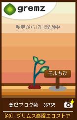 d0126127_17221567.jpg