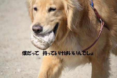 f0114128_2118242.jpg
